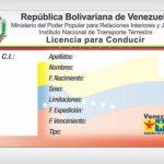 canje de licencia de conducir venezolana en españa